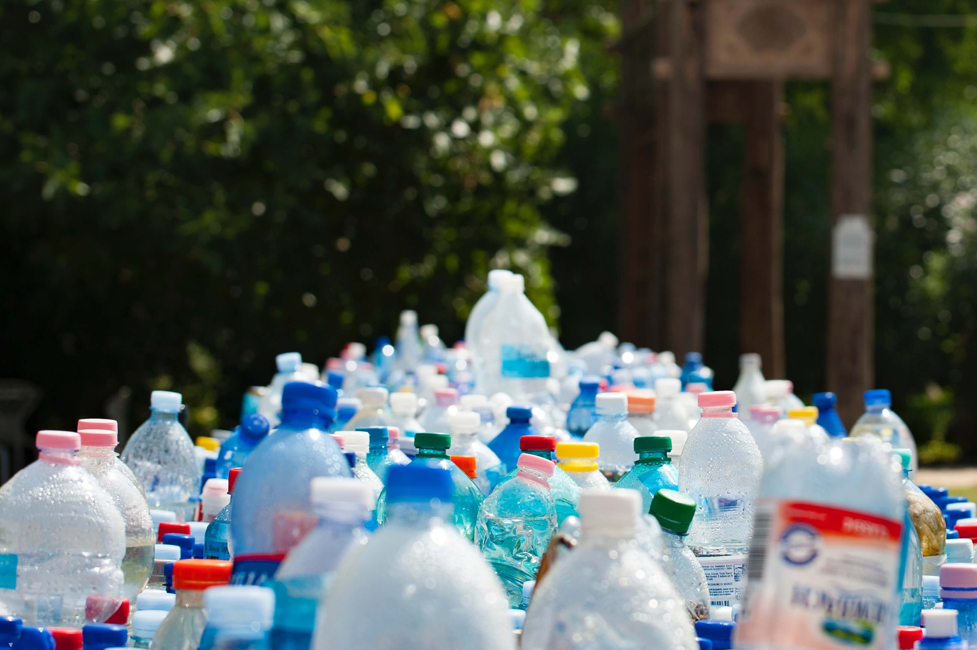 Image of several different types of plastic bottles lined up