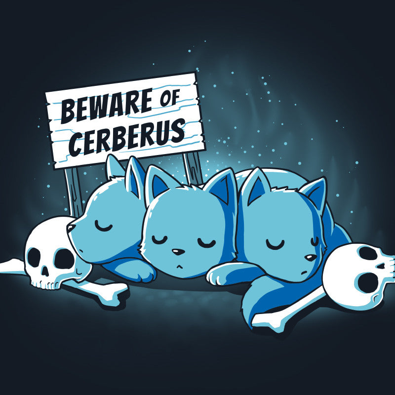 Beware of Cerberus
