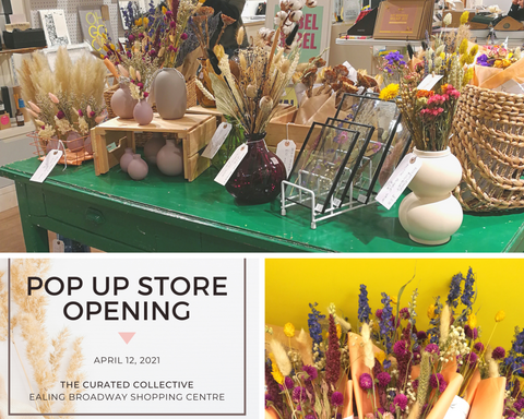 The Curated Collective pop up event for Pampas Living