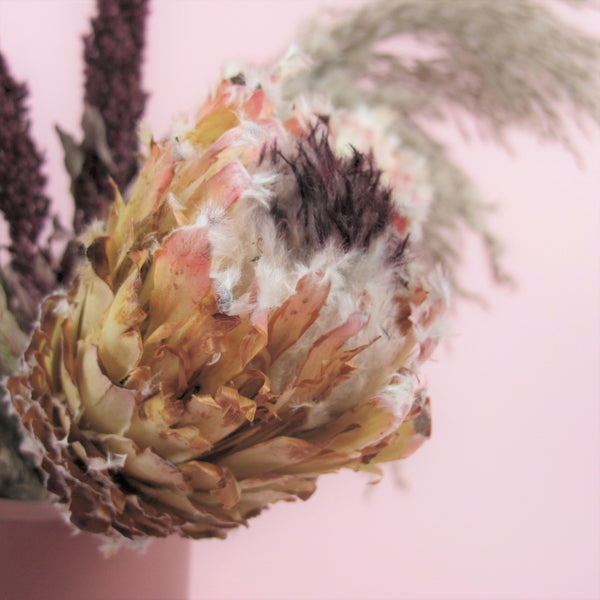 "NEW ""Magnificent Love"" Dried Floral Arrangement"