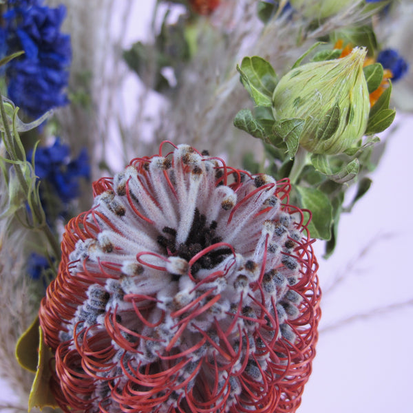 "NEW ""Exotic Scarlet"" Dried Flower Bouquet"