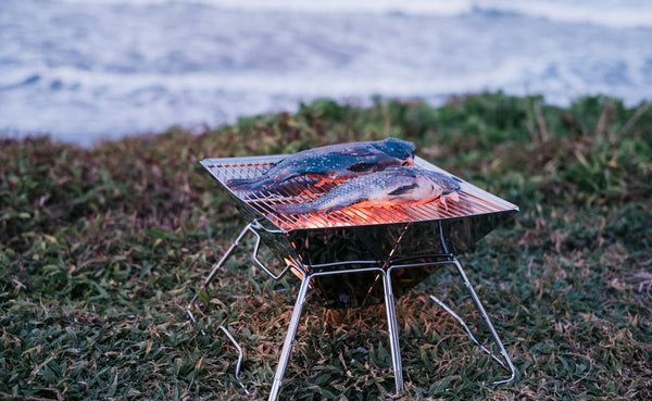 Tani Camping Portable Stainless BBQ Grill