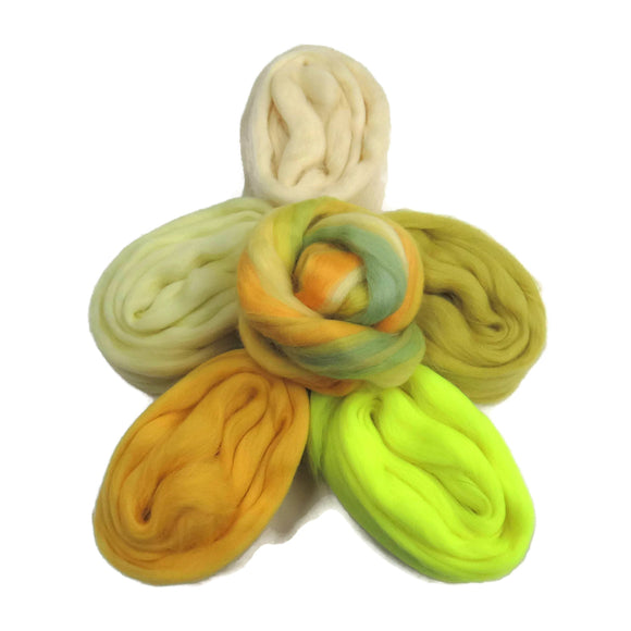 Felters Palette Merino Wool Roving Kit - 5 Citrus Colors Superfine Wool Fibers Assortment (blended roving optional)