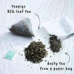 Teapigs Peppermint Tea - Tea Bags (1x50)