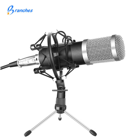 BM-800 Professional  Microphone Kit :Microphone For Computer