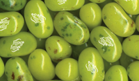 Jelly Belly Beans - Juicy Pear