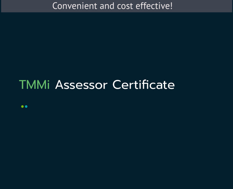 TMMi Assessor Certification Course