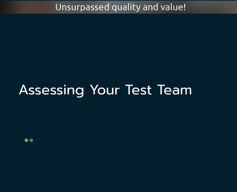 Assessing Your Test Team
