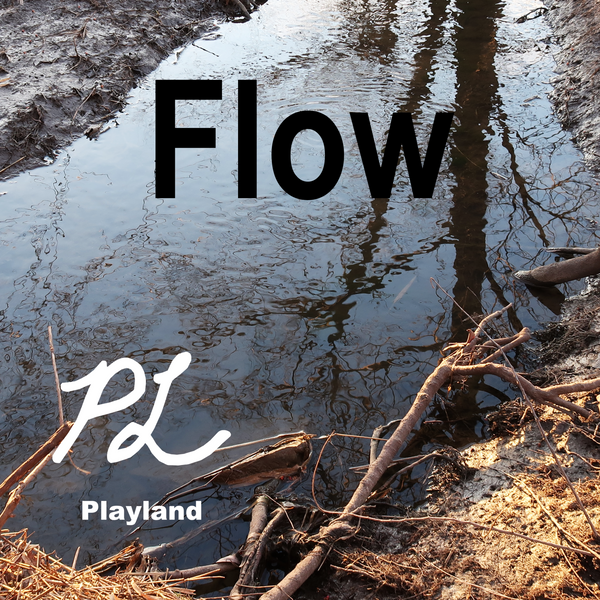 CD Flow By Playland Music