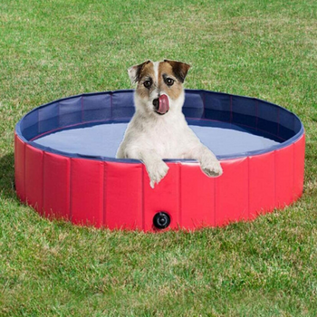 Foldable Dog Swimming Pool |  Leak Proof