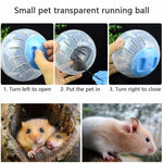 Small Animal Jogging Plastic,  Exercise Ball.