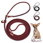 4ft/5ft Leather Small Dog Leash P Chian Collar