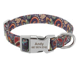 Custom, Engraved Floral Dog Collar, SML