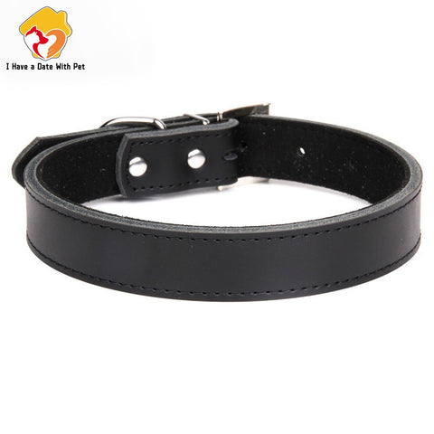 1 Piece Genuine Leather Dog collar 7 colors -  XS S M L