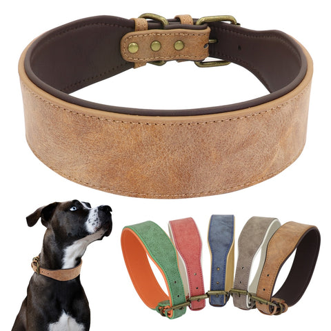 Wide Leather Soft Padded Dog Collars/ Medium Large Dogs