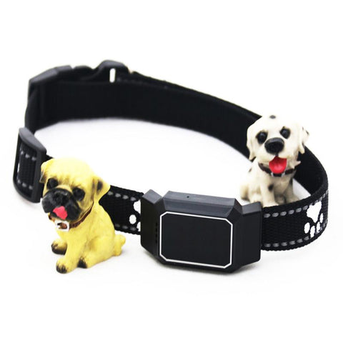 Smart GPS Tracker Collar - Dog/Cat Locator