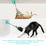Dog Toothbrush / Teeth Cleaning / Massage