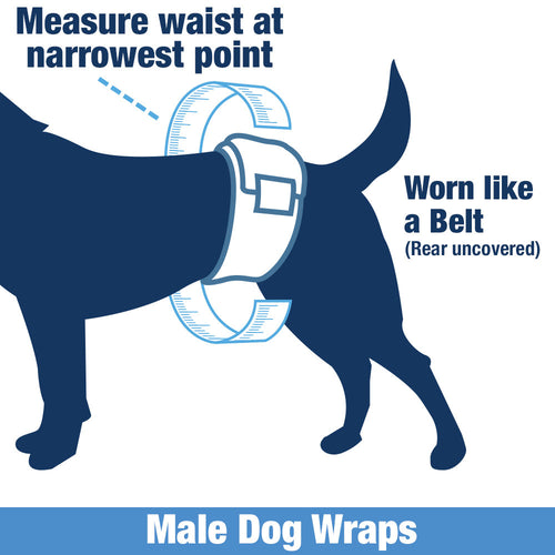 ValueWrap Disposable Male Dog Diapers, 2-Tabs Medium, 144 Count
