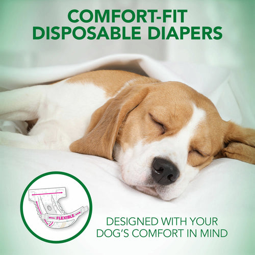 Vet's Best Diapers with Tail-Hole for Female Dogs, Comfort-Fit Disposable, X-Small, 12 Count, 3 Pack