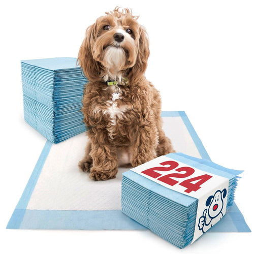 ValuePad Puppy Pads, Medium 23x24 Inch, Economy, 224 Count