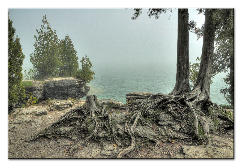 Misty Cave Point