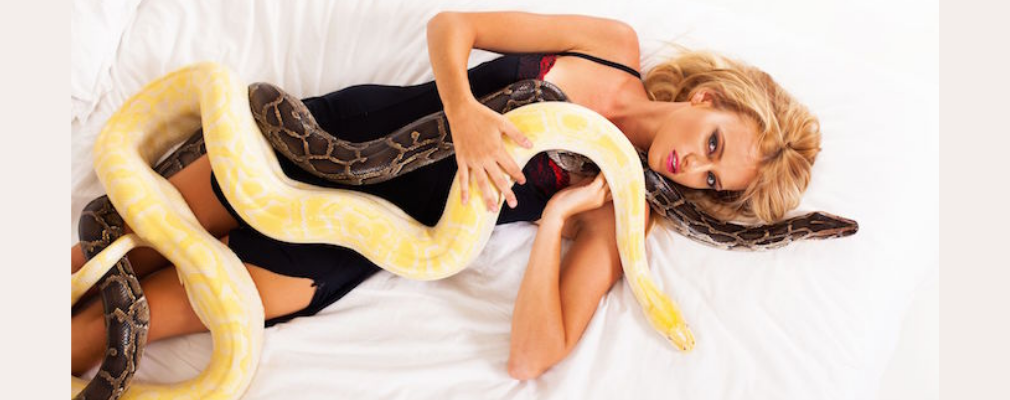 snake dream sexual meaning
