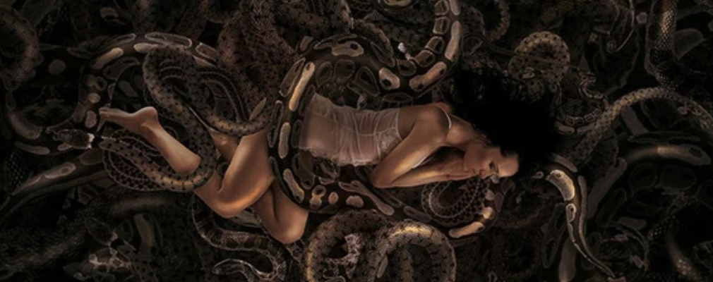 surrounded by snake dream