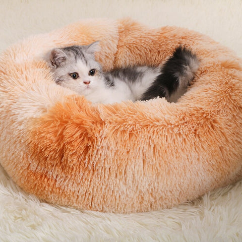 Couchage pour chat orange