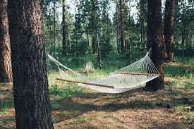 How to Hang A Hammock From A Tree – Details To Consider
