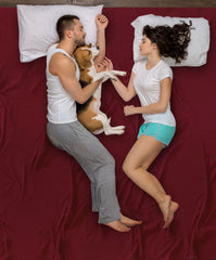 people and dog sleeping on bed