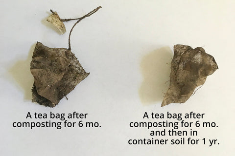 Composting Tea Bags Waste Free World