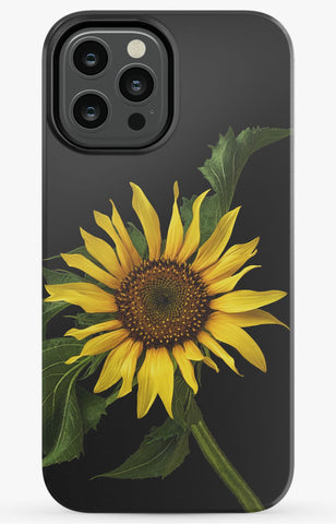 Scraggly Sunflower Phone Case