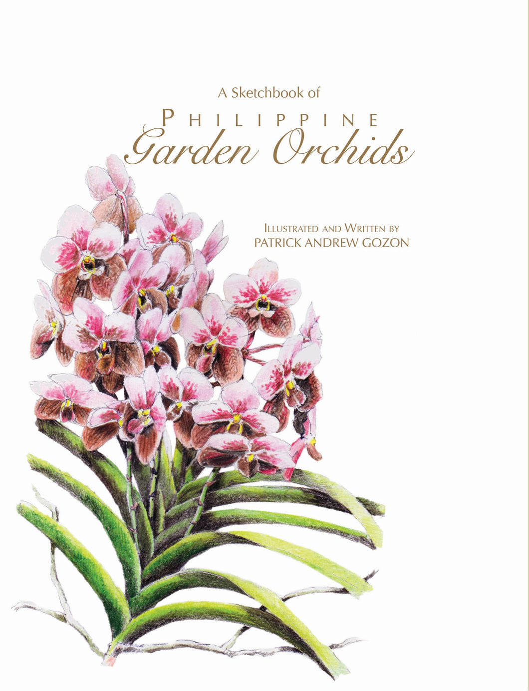 A Sketchbook of Philippine Garden Orchid