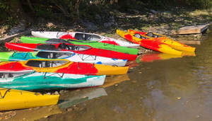 Different coloured kayaks on a beach
