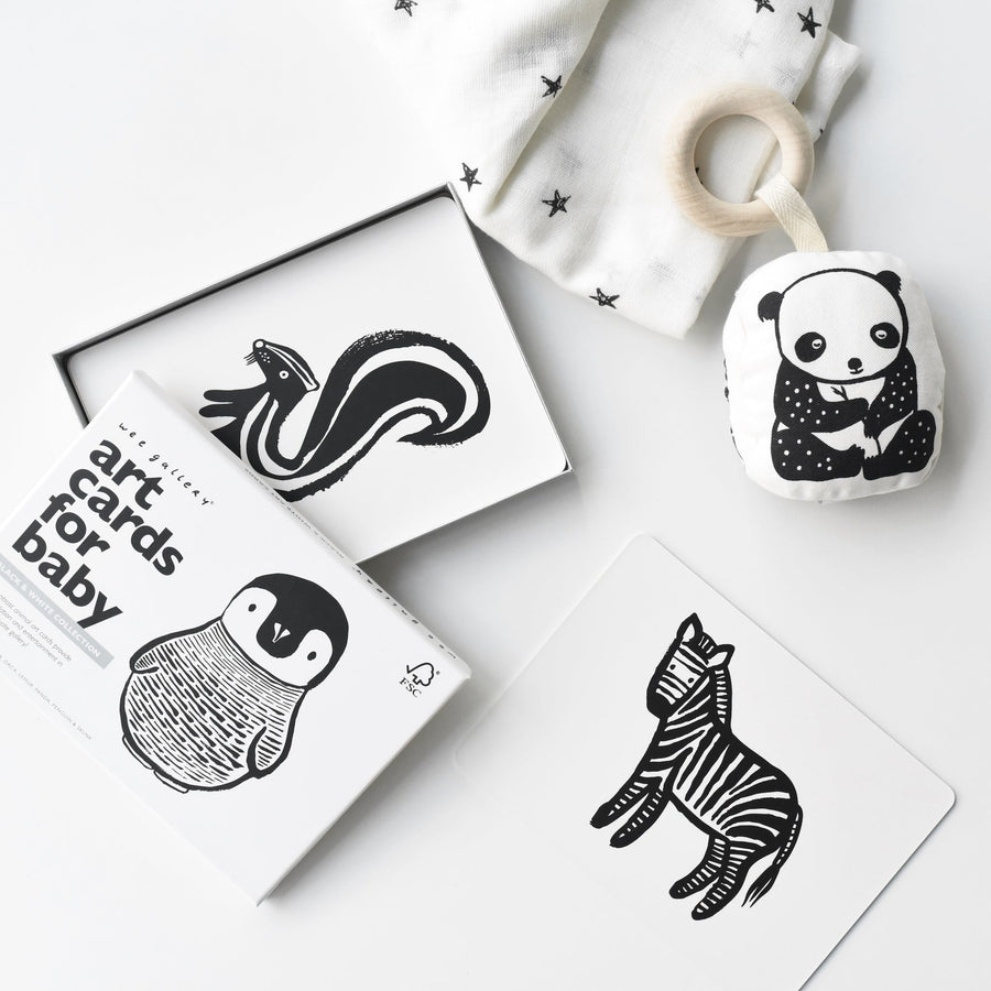 Little Naturalist Gift Set - Black + White