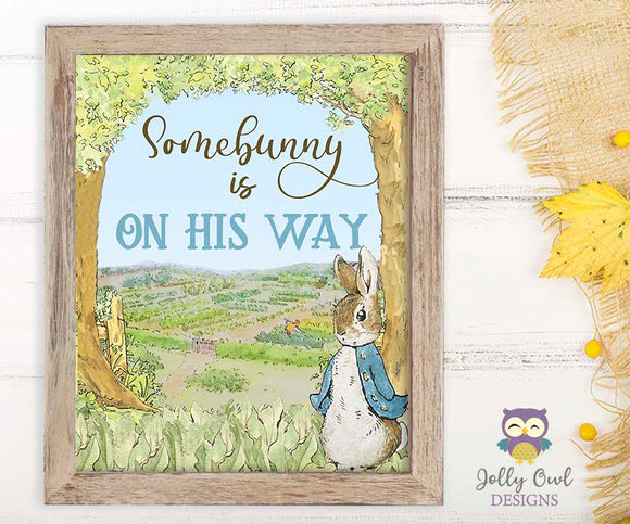 Peter Rabbit Birthday Party Signs - Somebunny Is On His Way