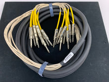 "Load image into Gallery viewer, HORIZON 8 CHANNEL 1/4"" to 1/4"" TRS BALANCED SNAKE CABLE 20'"