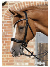Load image into Gallery viewer, Premier Equine Abriano Double Bridle