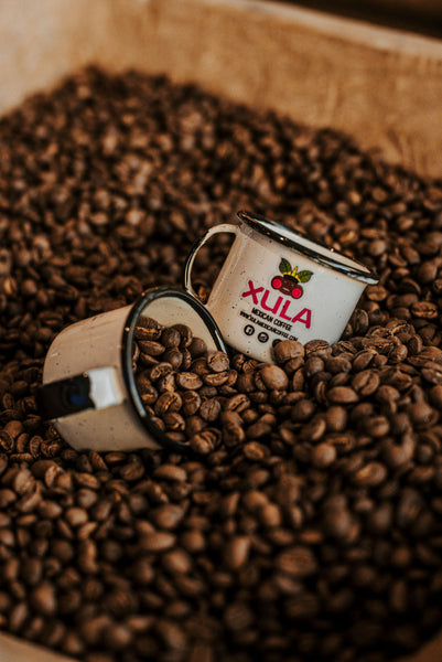 Xula Mexican Coffee - Dark Roast Specialty Coffee - Xula Mexican Coffee