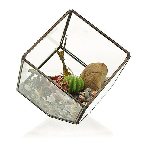 Glass Terrarium - Cube on Corner-Decor-The Modern Home Shop