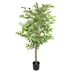 Artificial Ficus Tree With Variegation Leaves 2m-Artificial Plant-The Modern Home Shop