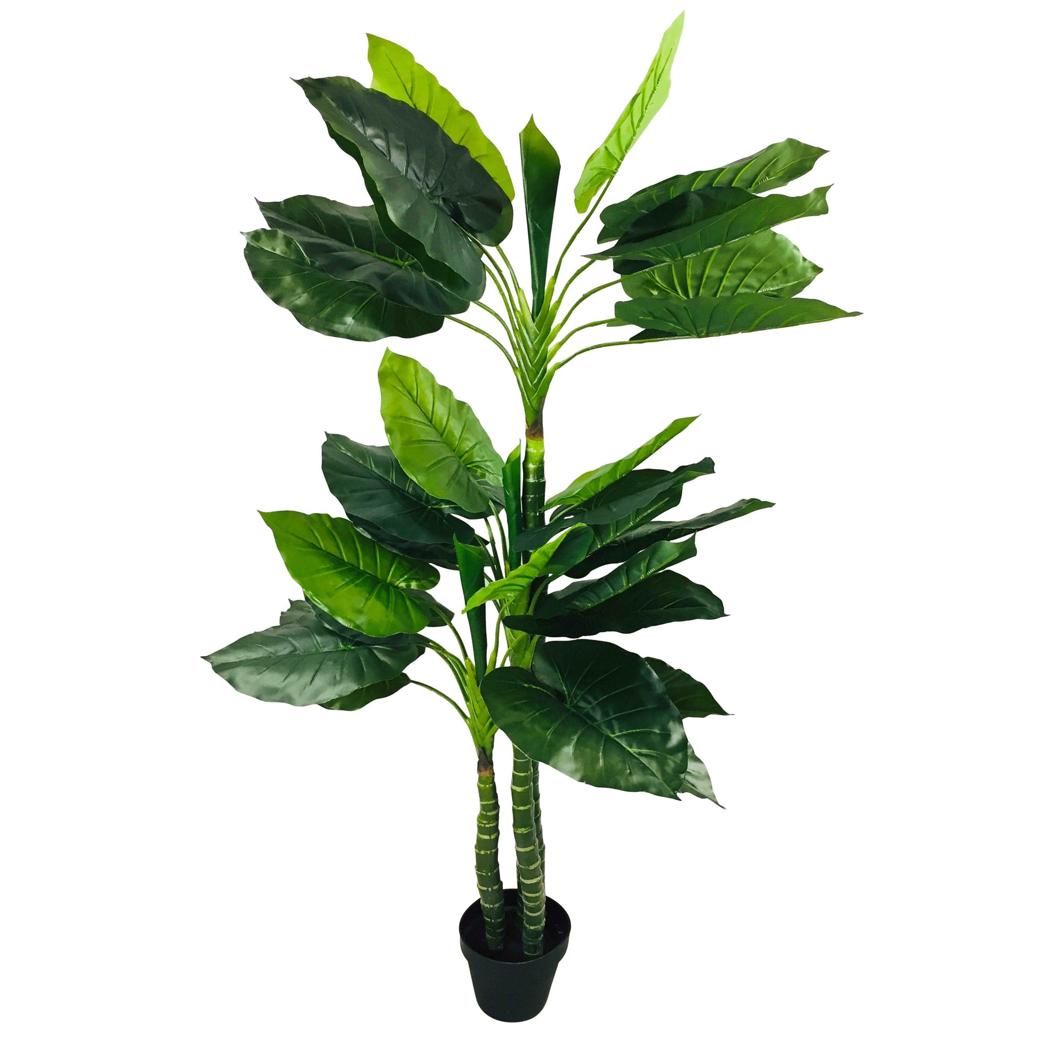 Artificial Taro Tree With 3 Trunks 150cm-Artificial Plant-The Modern Home Shop