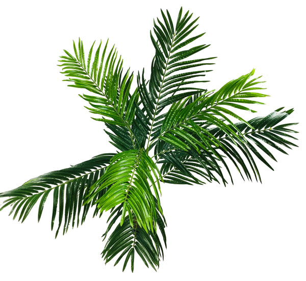 Artificial Palm Tree 150cm-Artificial Plant-The Modern Home Shop