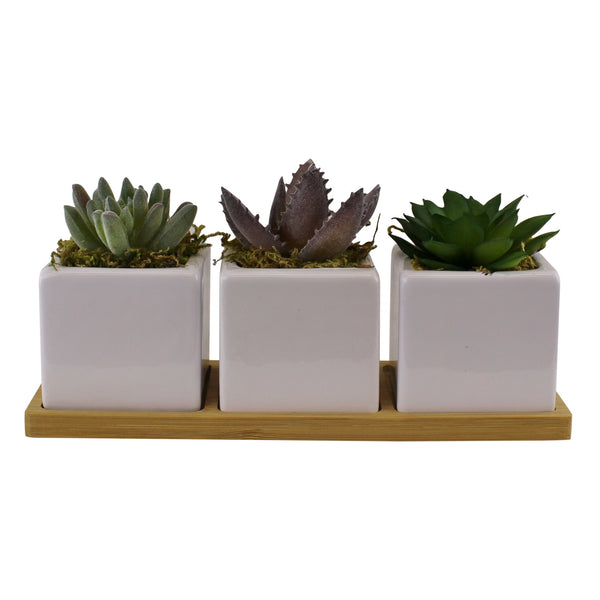 Set of 3 Faux Succulents On A Wooden Tray