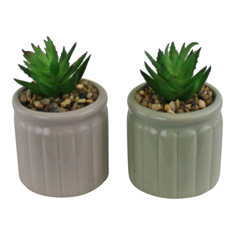 Set of Two Succulents In Ceramic Pots-Artificial Plant-The Modern Home Shop