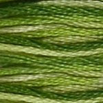 DMC Embroidery Floss - 92 Variegated Green
