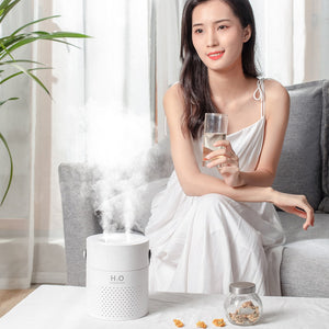 1.1L Large Capacity Air Humidifier Dual Spray