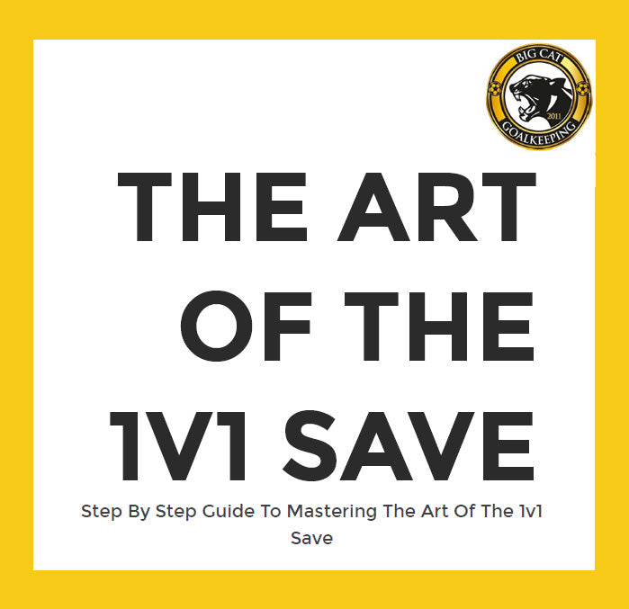 The Art of the 1v1 Save ebook