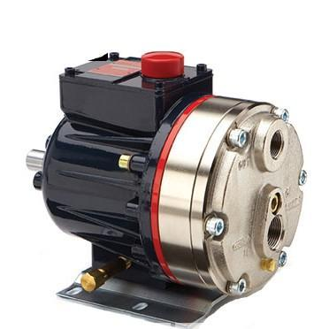 Hydra-Cell - Multi-Diaphragm Metering Pump - D10-Series - 316SS/PTFE - Max 6.0-GPM @ 1750-RPM - Part #: D10SKSJSNEMB
