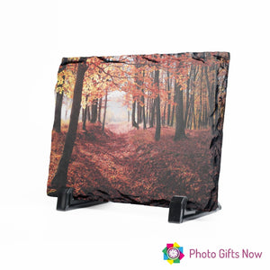 Photo Printed Rock Slate Display with Stand.
